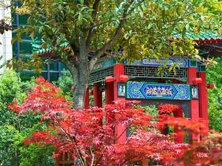 Sofitel Xian On Renmin…, 319 Dongxin Street,