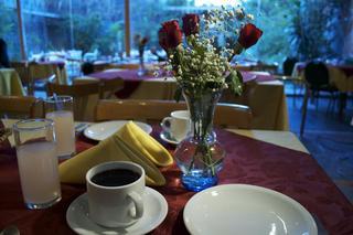 Bauen Suite Hotel - Restaurant
