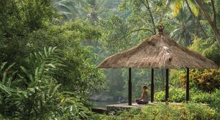 Four Seasons Resorts Bali at Sayan