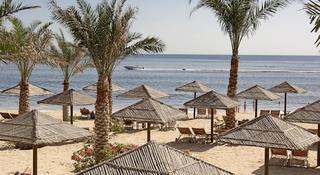 Miramar Al Aqah Beach Resort Fujairah - Strand