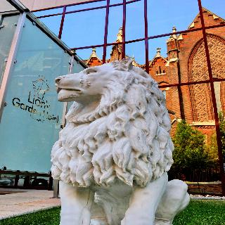 Hotel Lion's Garden