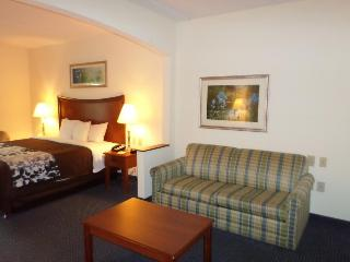Sleep Inn & Suites, 3280 Western Branch Blvd,3280