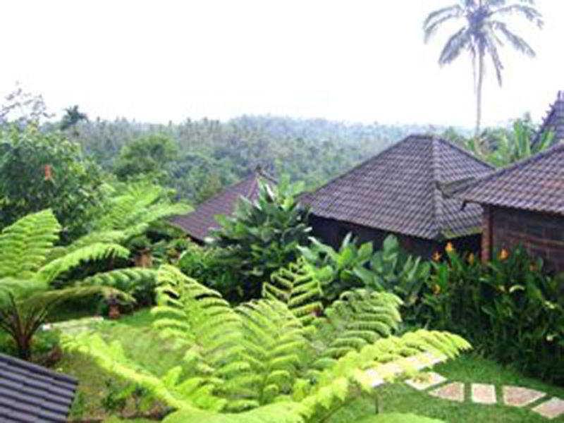 Bali mountain retreat, Mount Batukaru Tabanan,