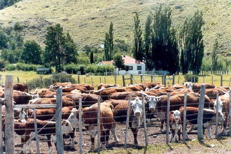 Hosteria Estancia La Quinta - Generell
