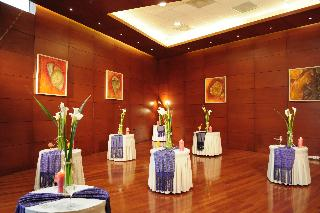Suites Camino Real - Konferenz
