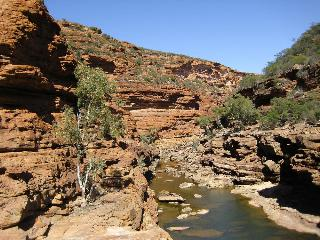 Kalbarri Palm Resort, 8 Porter Street,