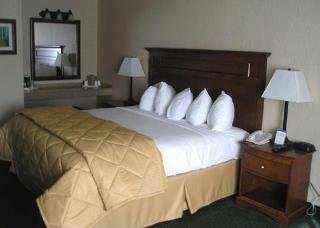 Comfort Inn Near Vail Beaver Creek