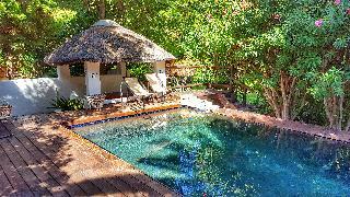 Mimosa Lodge - Pool