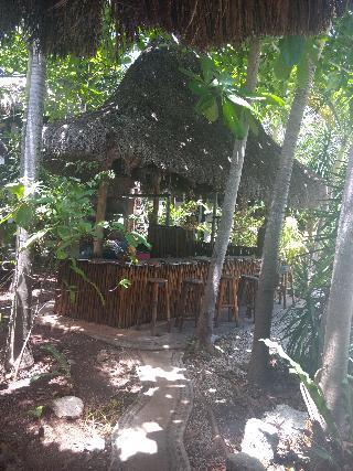 Green Tulum Cabañas & Gardens - Bar