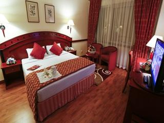 Book Panorama Grand Hotel Dubai - image 10