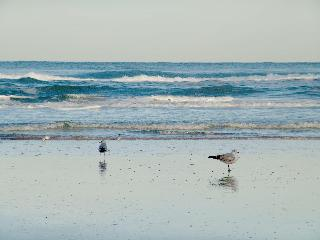 Hampton Inn Daytona…, 3135 South Atlantic Avenue,
