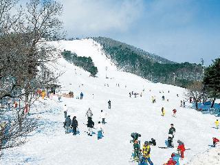 Com´s Sendai, 2-18-11, Hon-cho,