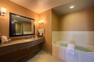 Hilton Garden Inn DFW North Grapevine
