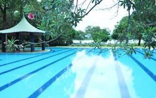 Sudu Araliya Polonnaruwa - Pool