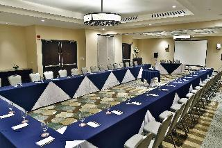 Hilton Garden Inn Liberia Airport - Konferenz