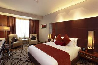 The Piccadily Janakpuri Hotel