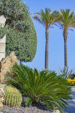 5 Sterne Hotel Grand Hotel Minareto In Siracusa Sizilien Italien