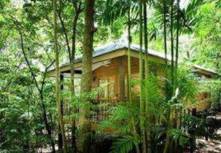 Thala Beach Nature Reserve, Captain Cook Hwy, Oak Beach,5078