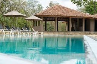 Palm Paradise Cabanas - Pool