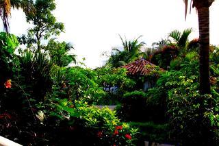 Sapphire Beach Resort, Estate Smith Bay,