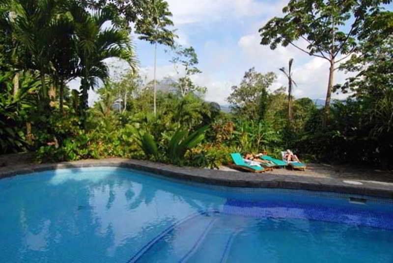 Lost Iguana Resort & Spa - Pool