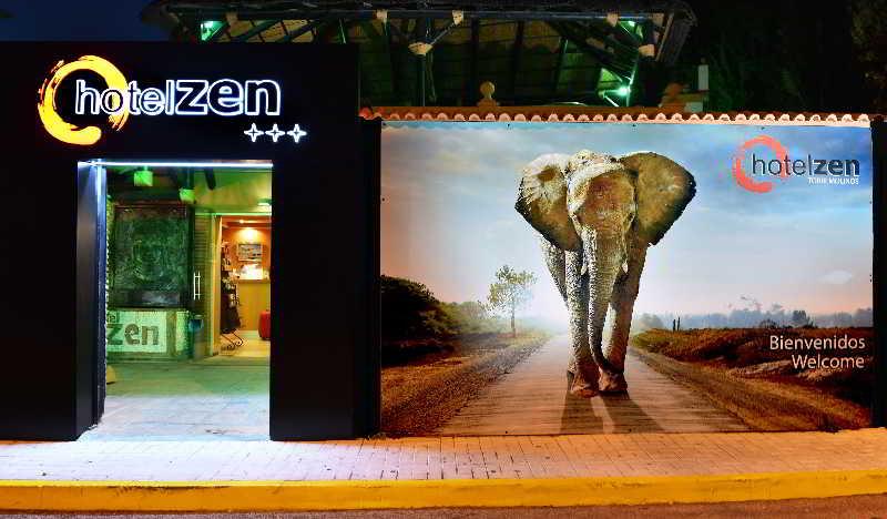 Zen airport - Terrasse