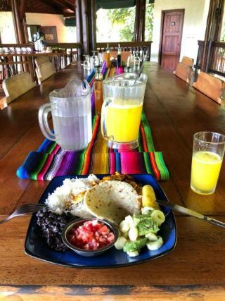 Playa Nicuesa Rain Forest Lodge - Restaurant