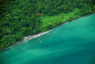 Playa Nicuesa Rain Forest Lodge - Strand