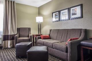 Comfort Suites, 313 Bauer Parkway,313