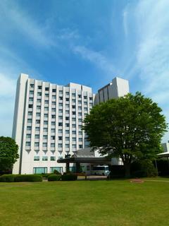 成田丽笙酒店 image