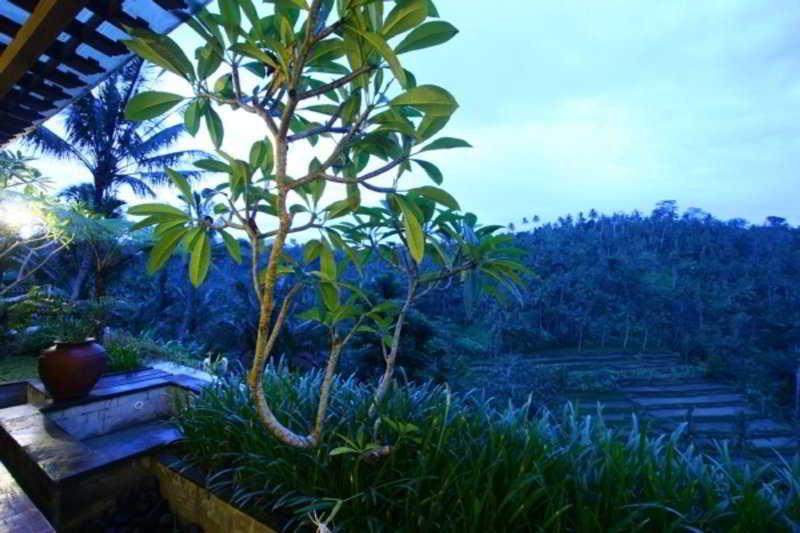 The Payangan Hideaway, Dusus Selasi Desa Puhu- Kecamatan…