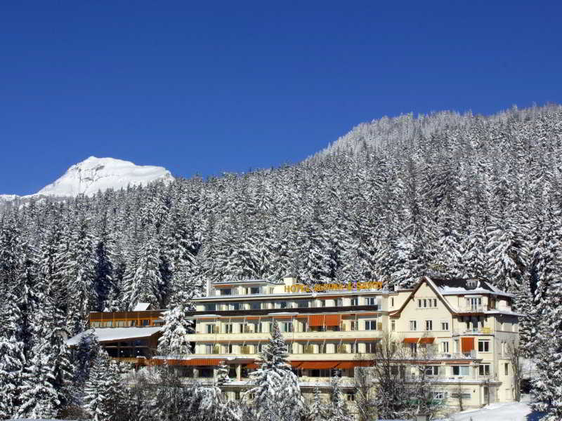 Alpina & Savoy, Route Du Rawyl,15