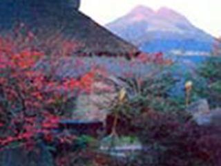 Makibanoie, 2870-1, Kawakami,