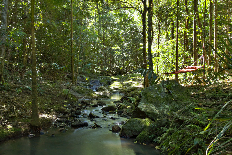 Narrows Escape Rainforest…, 78 Narrows Rd,