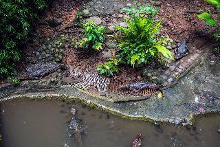 Si Como No Resort Spa & Wildlife Refuge - Sport