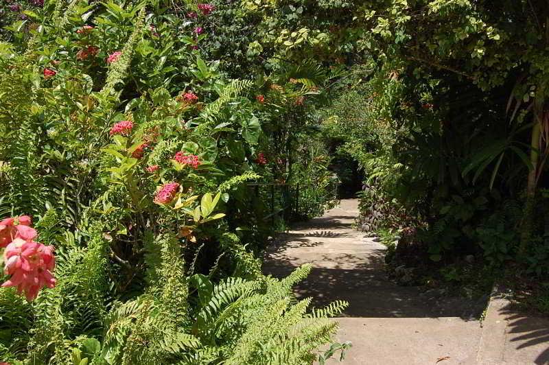 The Inn At Shaw Park Gardens & Waterfalls - Generell