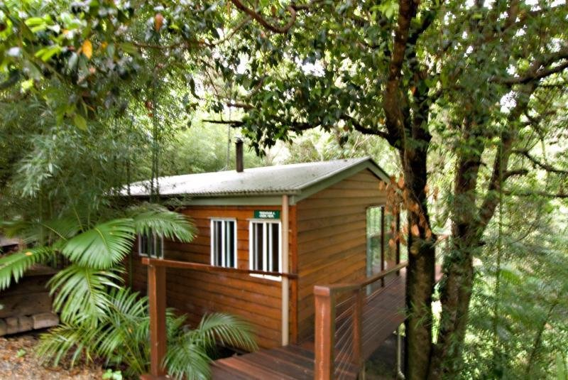 Tree Houses of Montville, End Of Kondalilla Falls Rd,.…