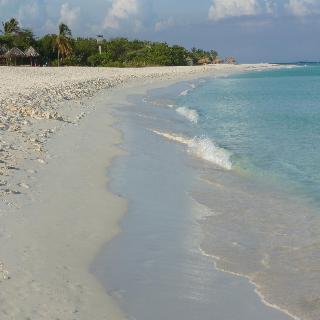MVC Eagle Beach Aruba - Strand