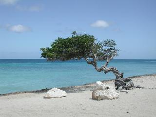 Aruba Harmony Apartments - Strand
