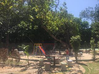 Caju Montebello - Generell