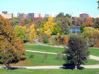 Best Western Plus Ottawa City Centre