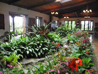 Villa Blanca Cloud Forest Hotel & Nature Reserve - Diele