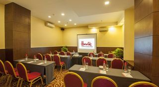 Harolds Hotel - Konferenz