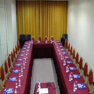 Skyna Hotel - Konferenz