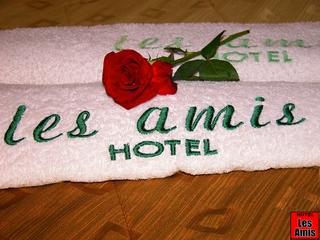 Airport Hotel Les Amis