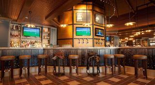Atlantis Harborside Resort - Bar