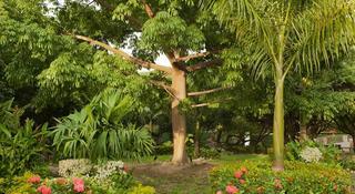 Irotama Resort Santa…, Km 14 Via Cienaga Santa Marta,