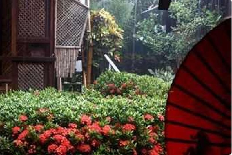 Frendz Resort Boracay - Generell