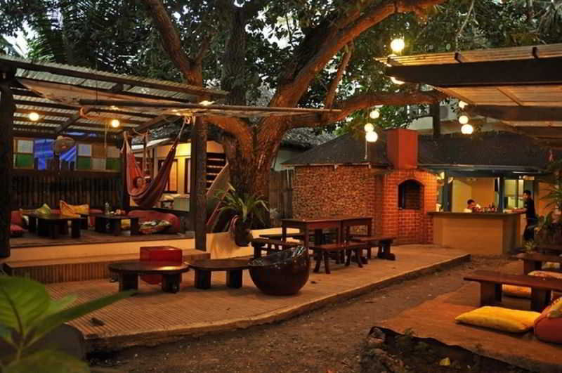 The Lazy Dog Bed and Breakfast - Generell