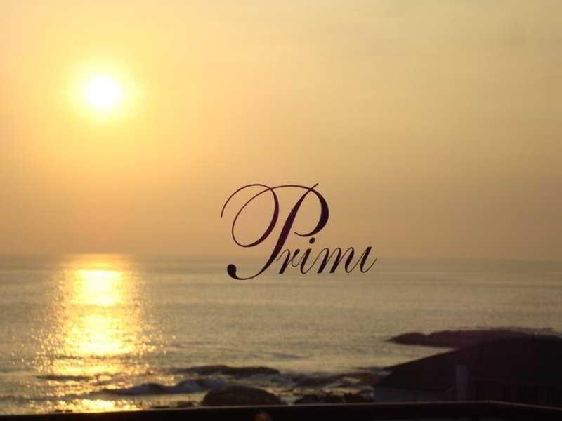 Primi Royal - Generell